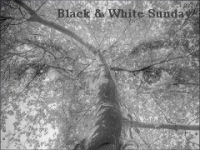 Black_and_White_Sunday_Photo_Challenge_mergeyes_widget