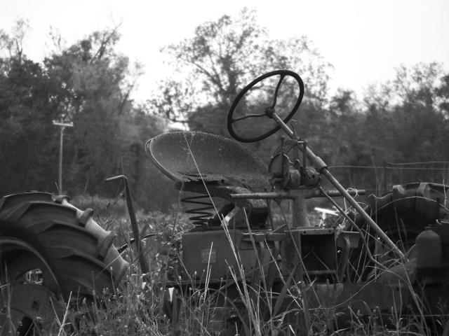 Old_Tractor_100_8252_Copy.jpg