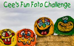 Cees_Fun_Foto_Challenge