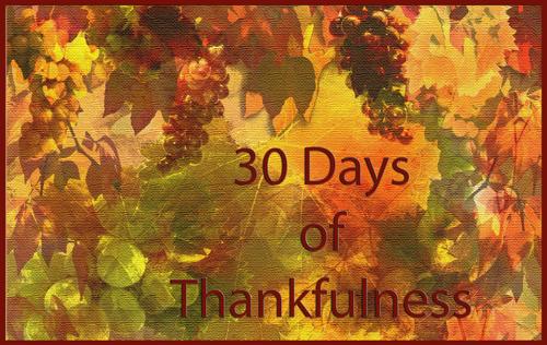 30_days_of_thankfulness_button_500