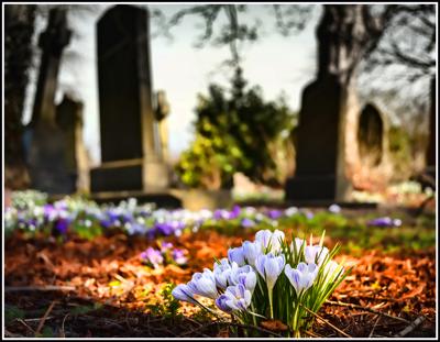 graveyard-1417871_400_web