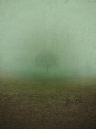 mist-495217_500web