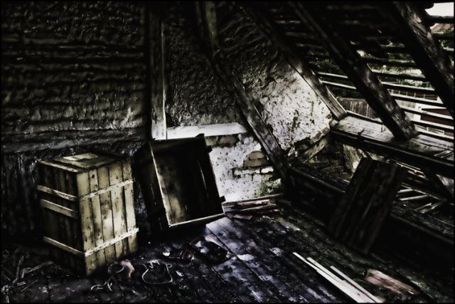 roof-540835_edited_web