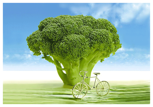 Broccoli_Bike_web