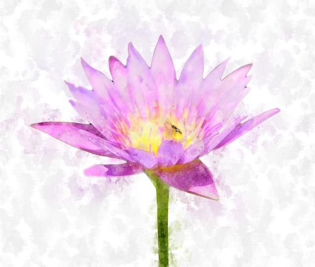 lotus-2159949_640
