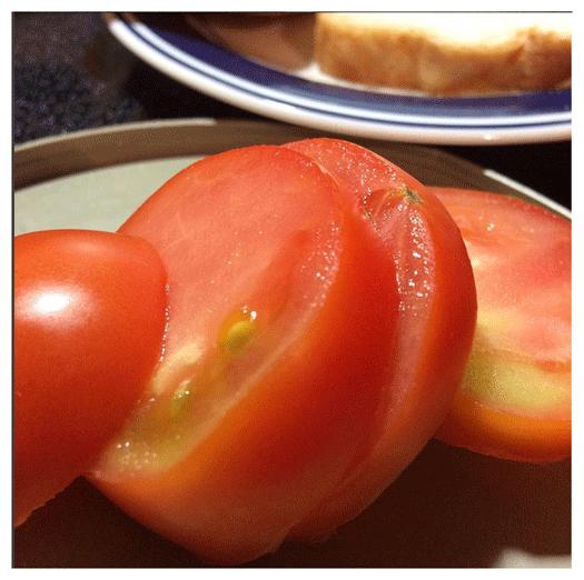 My_Tomato_2017_web
