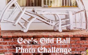 Cees_Oddball_Challege_cob-banner