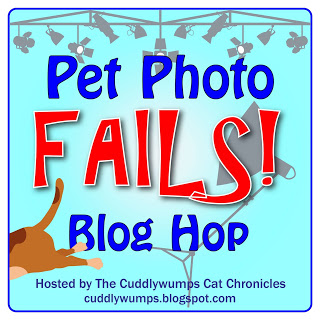 Pet Photo Fail blog hop badge500_2-01