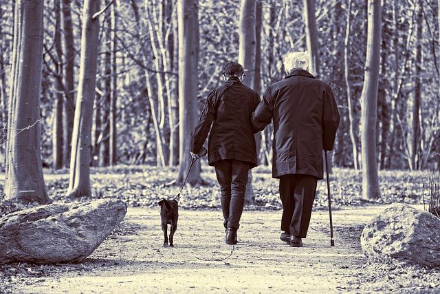 elderly-couple-3304384_640
