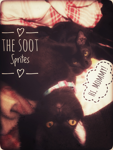 The-Soot-Sprites-2_8853_web
