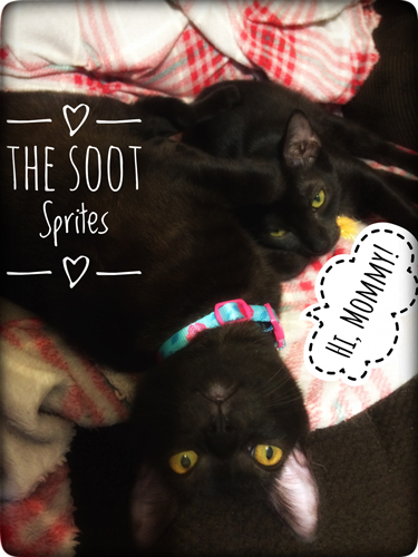 The-Soot-Sprites_1_8851_web