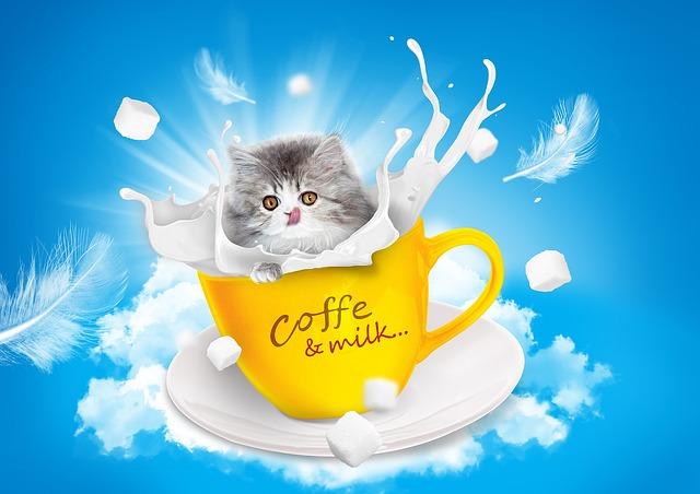 cat-1027486_640