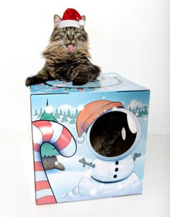 Kitty Box 2
