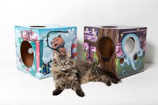 Kitty Box 3