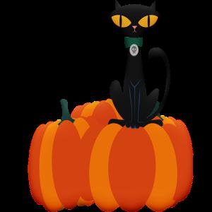 halloween-cat-4338697_640